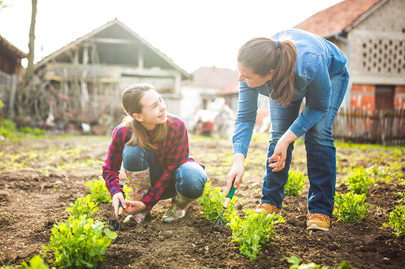two people gardening in the sunshine